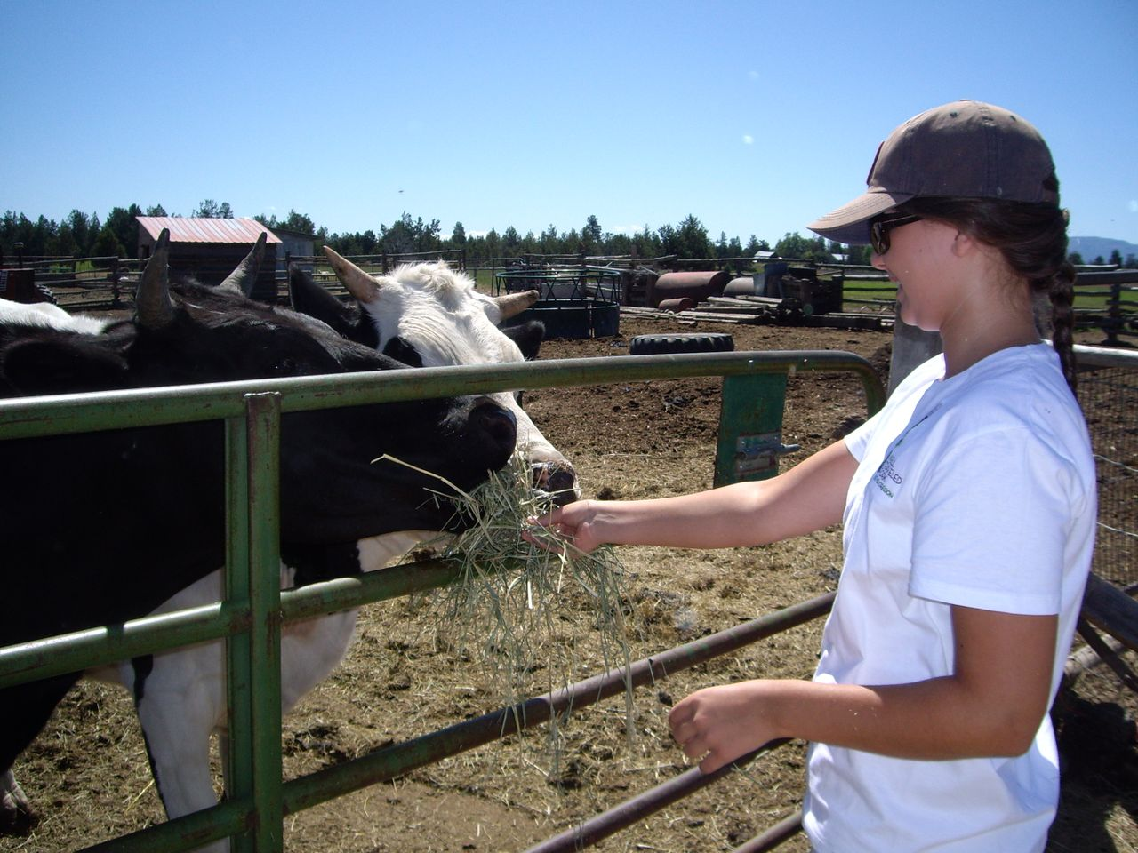 Get up close and personal with farm animals on the Farm & Ranch tour.