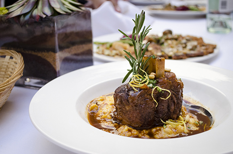 Yes, your dog would probably love the osso bucco at Jackalope Grill. How about we don't tell him that's what you're having for dinner?