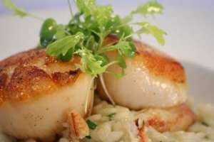 Tasty scallops at Ariana Restaurant.