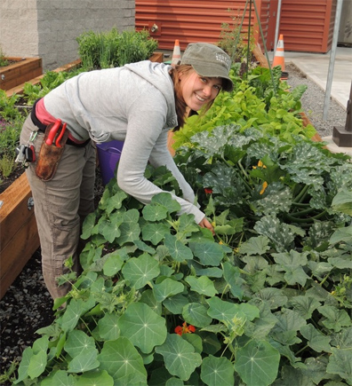 Worthy's on-staff garden consultant, Lisa, tends to the veggies.