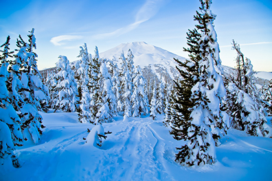 Visit Bend's marketing director, Nate Wyeth, took this shot on a recent snowshoe outing up Tumalo Mountain.