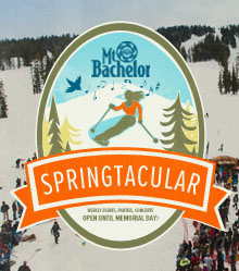 Springtacular2013_WebsiteHeader