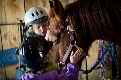 The kids learn proper care and grooming for horses during a private lesson at Rhinestone Ranch.