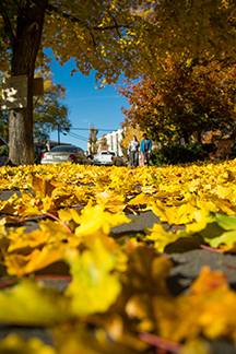 The fall leaves around Drake Park in Downtown Bend are one of many reasons Bend is a great spot for a shoulder season vacation.