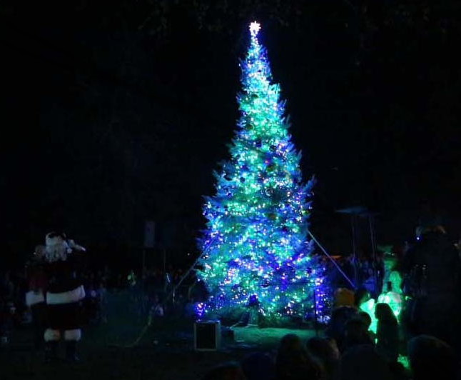 The lovely Christmas tree in Drake Park near Downtown Bend.
