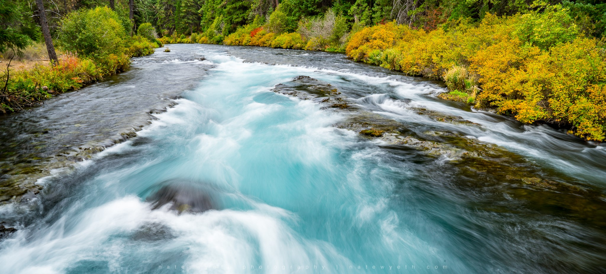 The mighty Metolius River is definitely worth a day trip when you're staying in Bend.