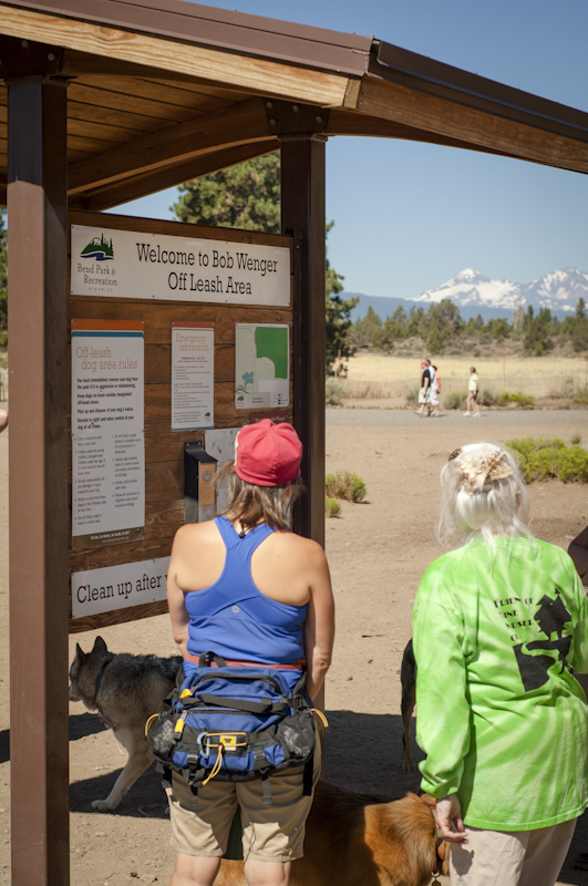 The Bob Wenger Memorial Off-Leash area is one of many amazing features of Pine Nursery Park.