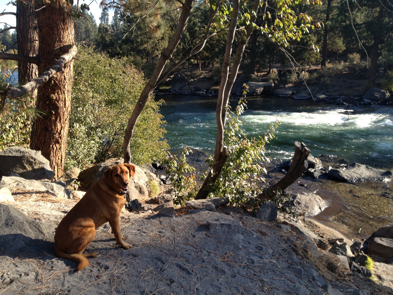 Gitsy-Along-River-Trail-Photo-By-Lynnette-Braillard