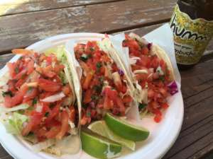 Salsa-packed fish tacos in three varieties (rockfish, halibut, and salmon) at Longboard Louie's.