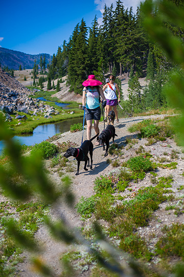 Hiking with dogs in Bend, Oregon