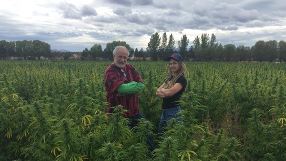 Blazing-Trails-Cannabis-Tours-960-2