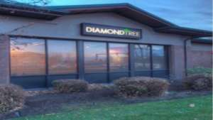DiamondTREE-East-960