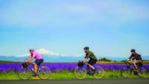 Madras Mountain Views – Oregon Scenic Bikeway