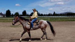 dianes-riding-place-960