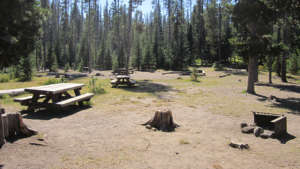little-fawn-group-camp-960