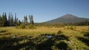 mallard-marsh-campground-960