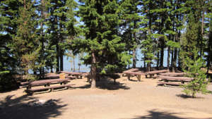 newberry-group-campground-960