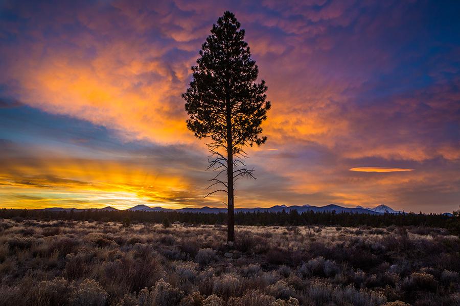 Sunset by Toni Toreno