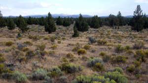 oregon-badlands-wilderness-960
