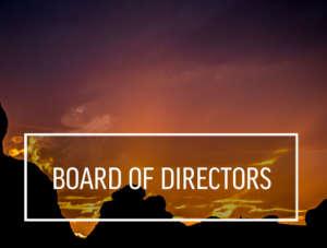Board of Directors 700x530
