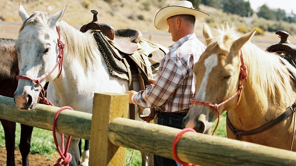 Brasada-Horseback-960-2