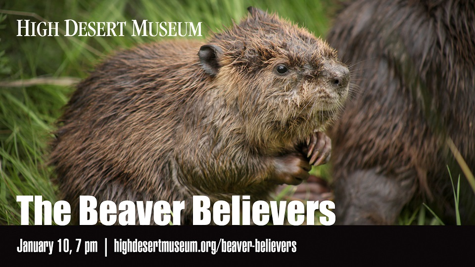 https://www.visitbend.com/wp-content/uploads/2018/12/beaver-believer-film-hdm-960.jpg