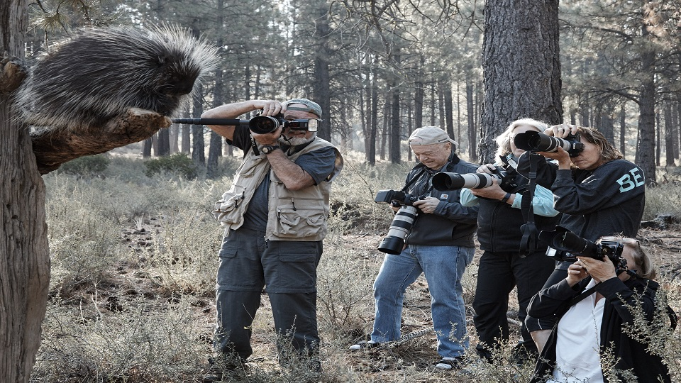 https://www.visitbend.com/wp-content/uploads/2019/02/HDM-Wildlife-Photography-960.jpg