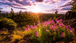 6 ways to kickstart spring rejuvenation in Bend