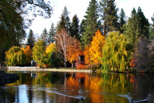 Mirror Pond at Drake Park, Bend with a Baby Blog