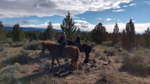red-horse-riding-school-960