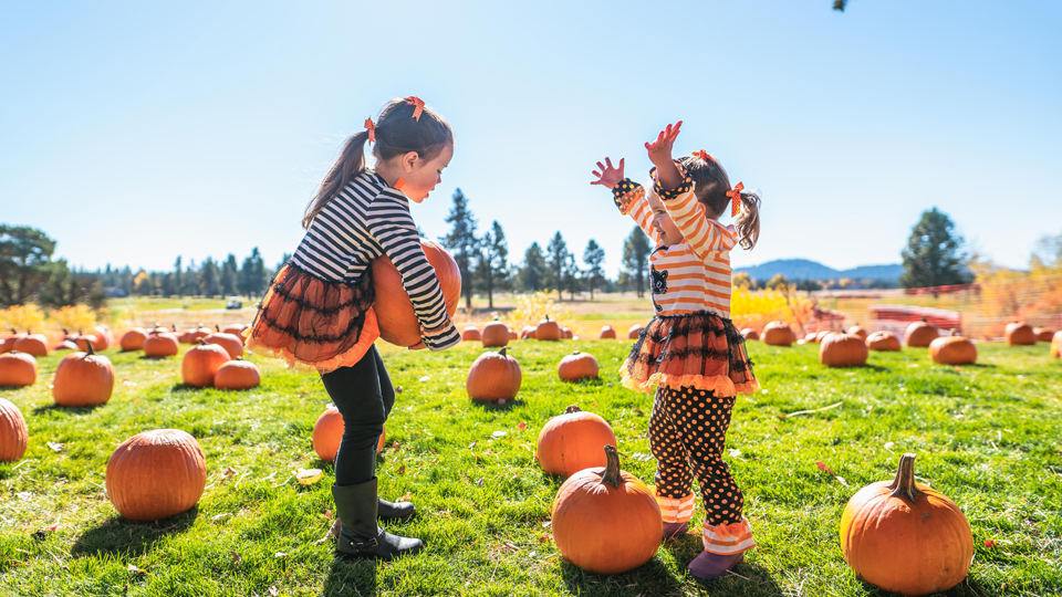 https://www.visitbend.com/wp-content/uploads/2019/08/Sunriver-Resort-Fall-Festival-960.jpg